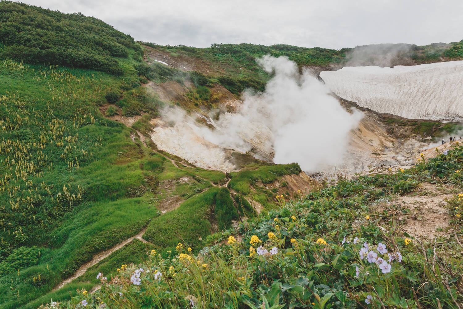 The Small Valley of Geysers